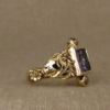 icelandic horse ring
