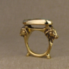 indian cows ring